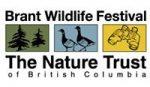 Brant Wildlife Festival