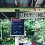 Goldstream Gardens /  Sunshine's Herb Pharm